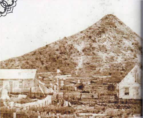Pine Grove House (1867)